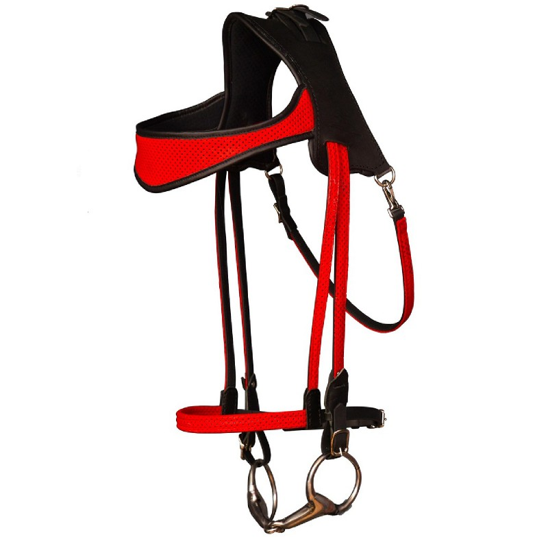 Simple ergonomic bridle
