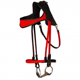 Simple ergonomic bridleSimple ergonomic bridle