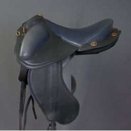 Compiègne Saddle - 2015
