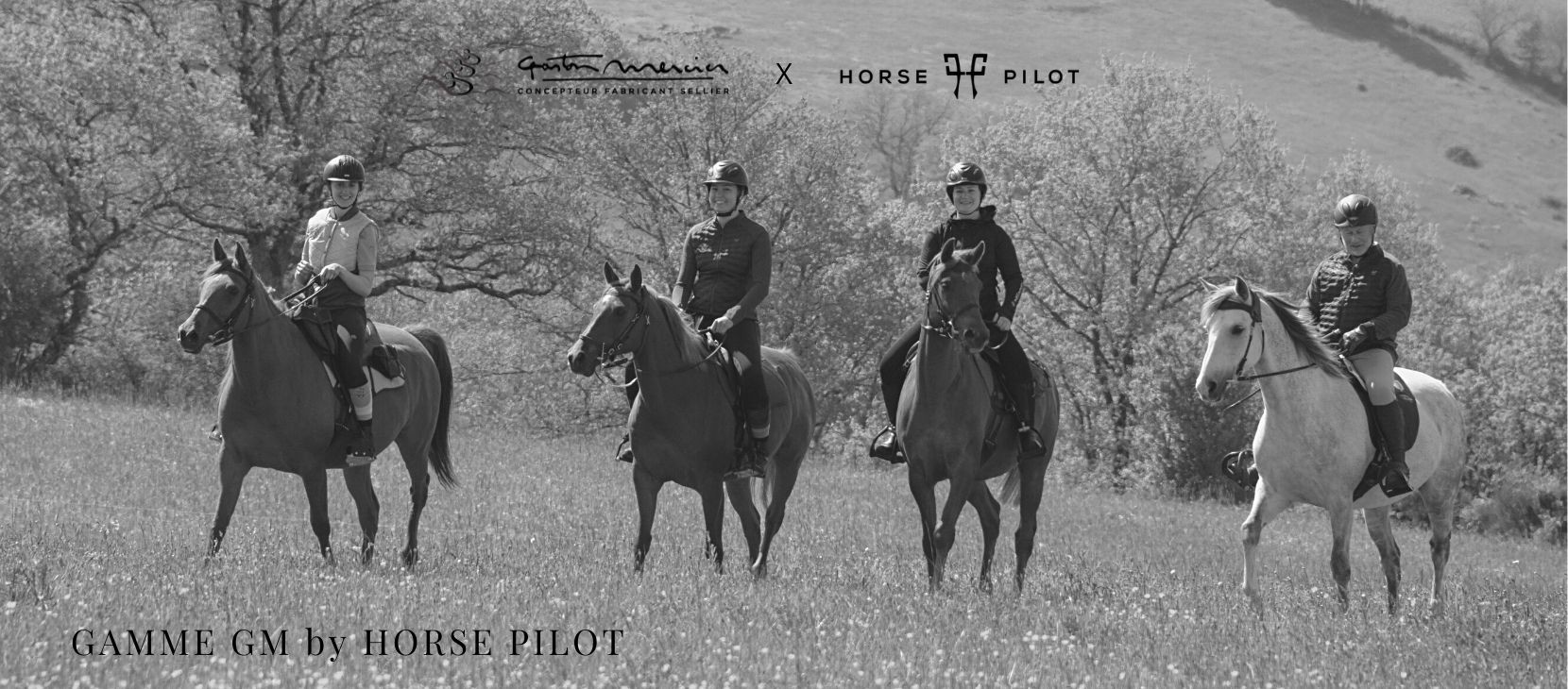 GM Line by Horse Pilot