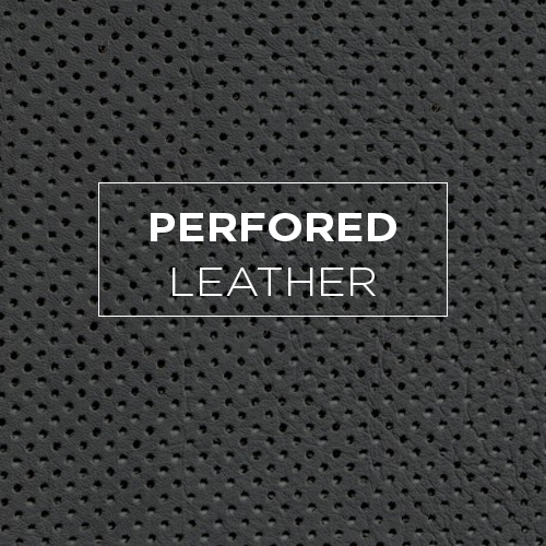 Perfored Leather