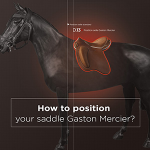 HOW TO POSITION YOUR SADDLE GASTON MERCIER?