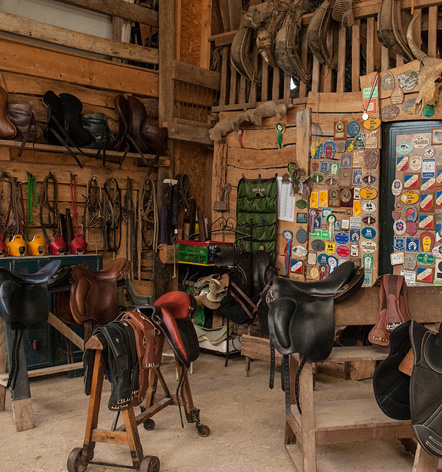 Tack room sale saddlery Gaston Mercier
