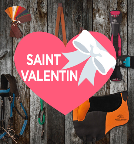 Carte Cadeau gaston Mercier Saint Valentin