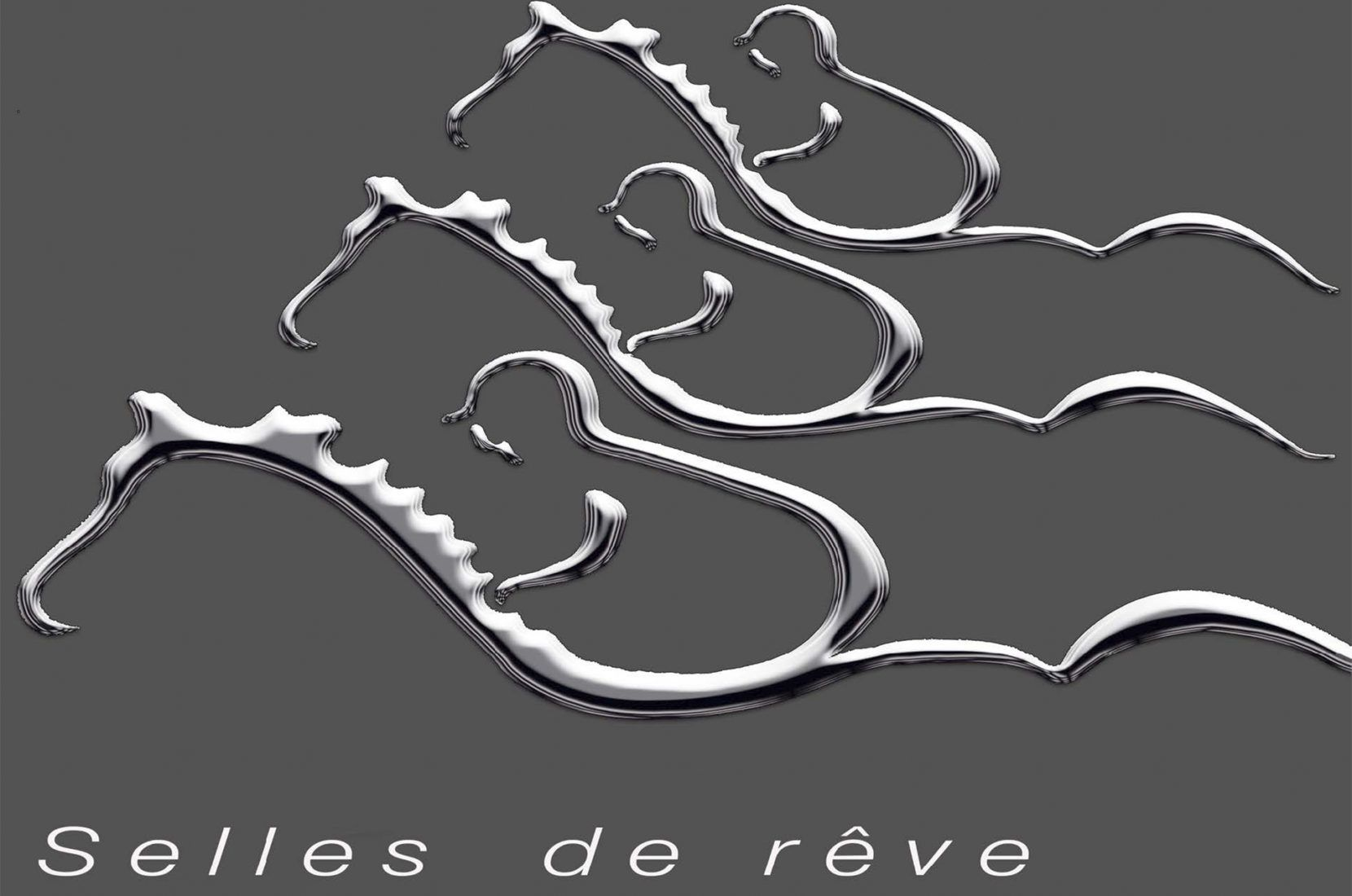 "Discover ""Selles de Rêve"" … E-Book Gaston Mercier"