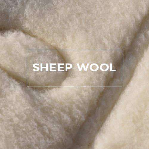 EN-SHEEP-WOOL