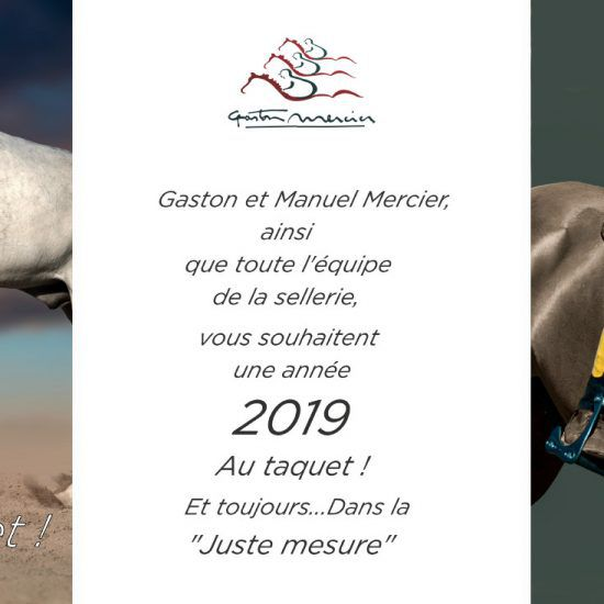 La sellerie Gaston Mercier à Cheval Passion – Avignon 2019