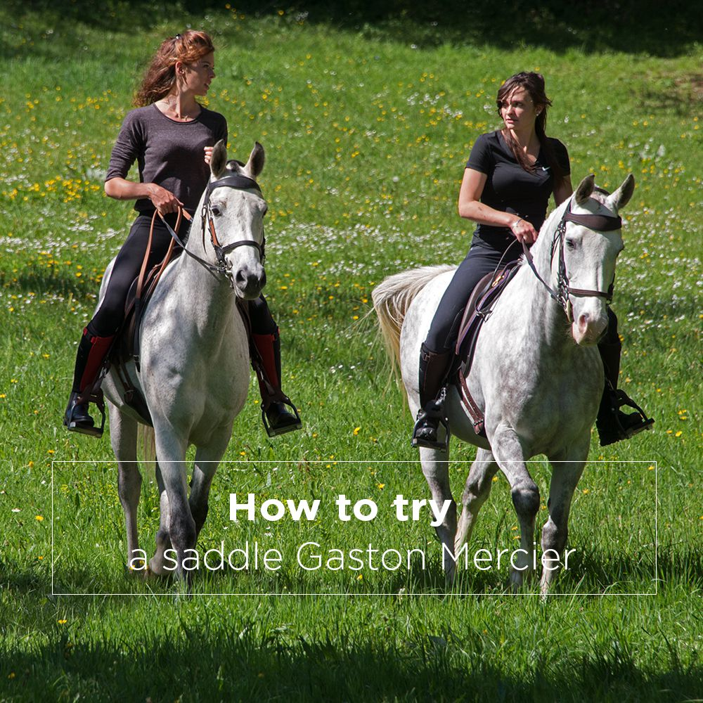 how-to-try-a-saddle gaston mercier