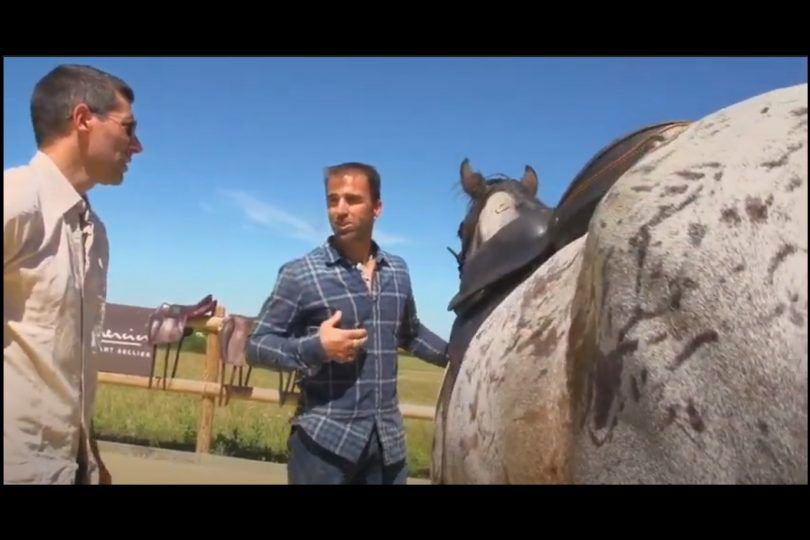 Saddle's Trials and measuring process for Right Pace Shadow, Ludovic Fournet's Mustang